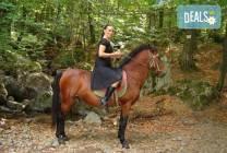 Конна езда от Конна база
