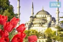 Ранни записвания, Истанбул, Фестивала на лалето 2019-та: 2 нощувки