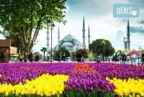 Фестивал на лалето в Истанбул: 2 нощувки и закуски в хотел 4*,