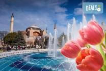 Фестивал на лалето в Истанбул: 2 нощувки, закуски, транспорт,