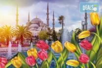 Фестивал на лалето в Истанбул: 2 нощувки и закуски, транспорт и бонус