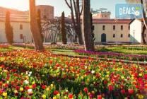 Фестивал на лалето в Истанбул през април: 2 нощувки и закуски,
