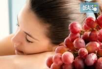 Масаж на цяло тяло с масло от гроздови семки и зонотерапия в студио