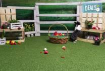 Великденска фотосесия с декори и обработка на всички кадри, D2T