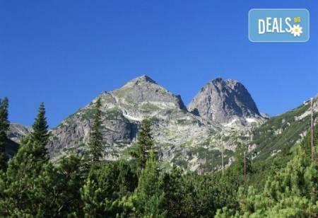 Екскурзия на 15.06. до връх Мальовица в Рила: транспорт и водач