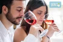 На празник на виното в Пловдив за 1 ден: транспорт, водач и програма