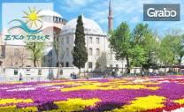 Посети Истанбул! 2 нощувки със закуски, плюс транспорт и възможност