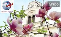 За Първа пролет до Белград! 2 нощувки със закуски, плюс транспорт и