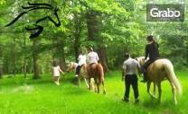 Конна езда в Долината на розите! Разходка или обучение за до петима,