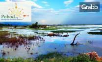 Еднодневна екскурзия до езерото на пеликаните и фламингото - Керкини