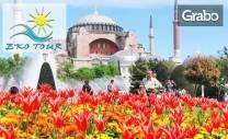 Посети Фестивала на лалето в Истанбул! 2 нощувки и закуски, плюс