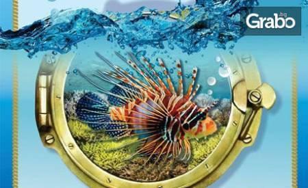 Вход за двама за изложба на екзотични рибки